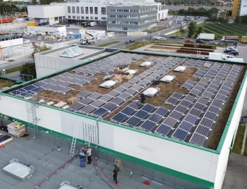2.700 Quadratmeter große Photovoltaikanlage für INSIGNIS